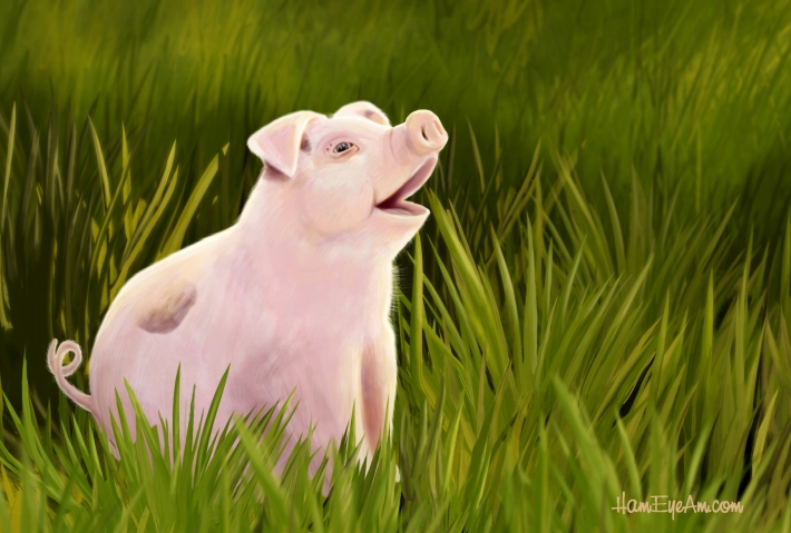 Pig in Grass