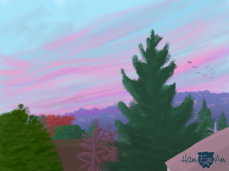 Sunset 11/17