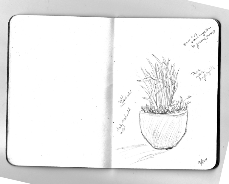 PlantSketch
