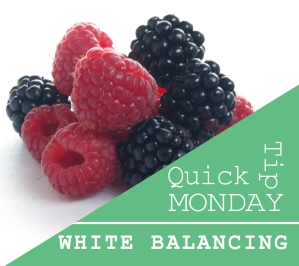 Quick Tip Monday - Raspberry and Blackberry