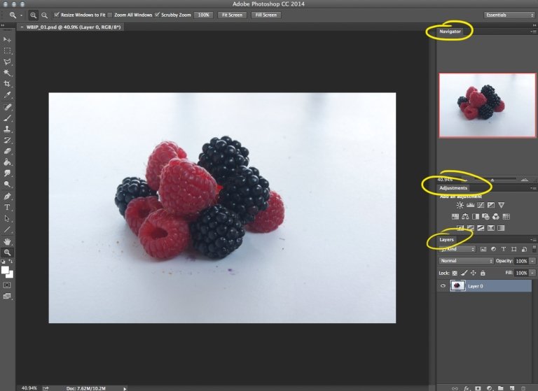 Quick Tip Monday - White Balance