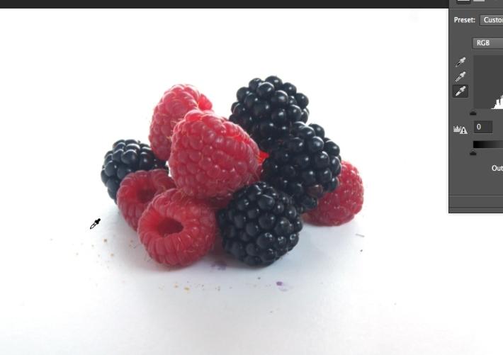 Quick Tip Monday - Raspberry and Blackberry